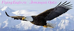 Летящий Орёл: Агни Йога (Живая Этика) - Эпоха Огня